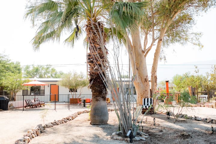 Cactus & Stars,  Desert Modern, Walk to Town