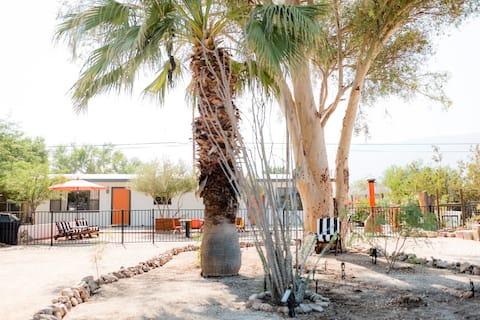 Cactus & Stars: Desert Modern, Walk to Town