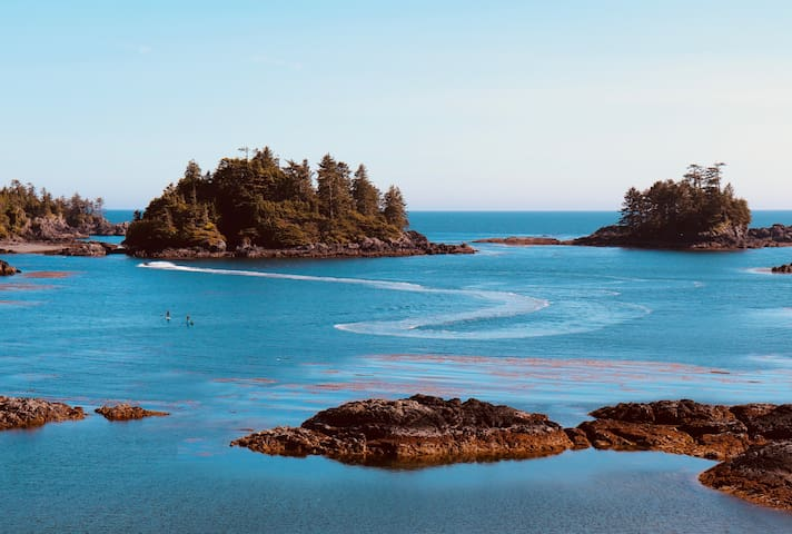 Ocean front Ucluelet Private Guest Suite 1