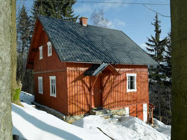 Cottage with stunning views - Paseky nad Jizerou - Hytte (i sveitsisk stil)