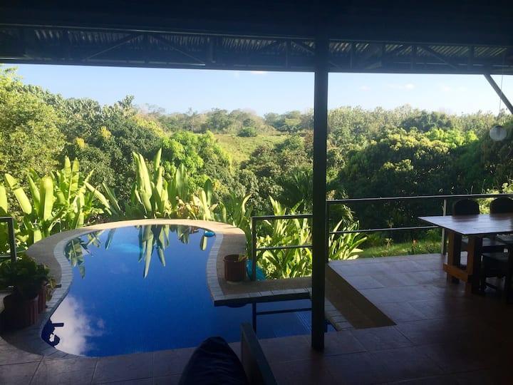Jungle Villa near Santa Teresa and Montezuma