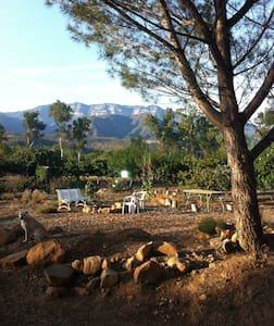 Red Tail Roost in Upper Ojai - Ojai - Casa