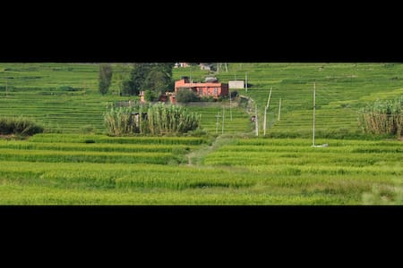 The Whole House in the ricefields - Kathmandu