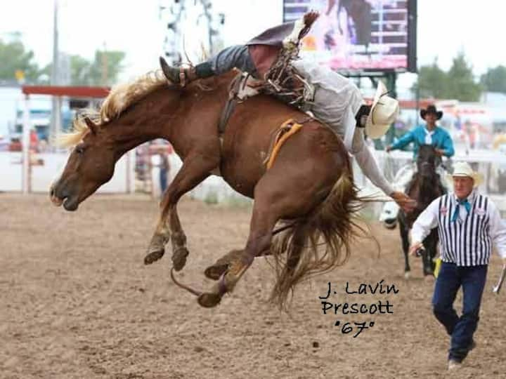 LaVin Ranch
