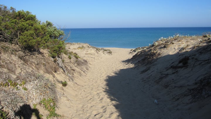 Very nice 80 sqm apartment, few steps from the sea