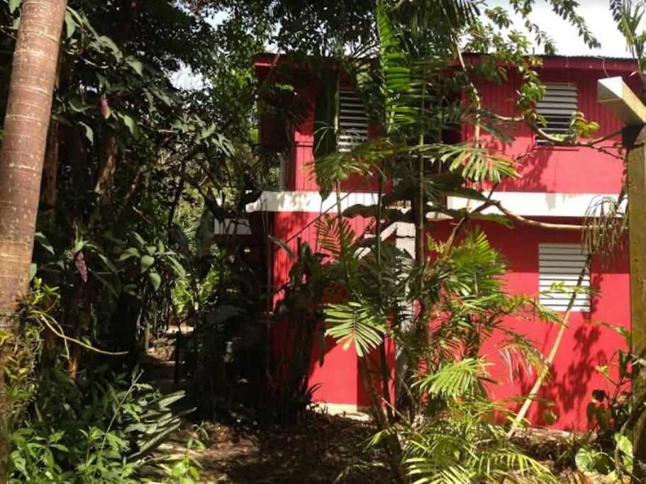 Tropical Farmhouse