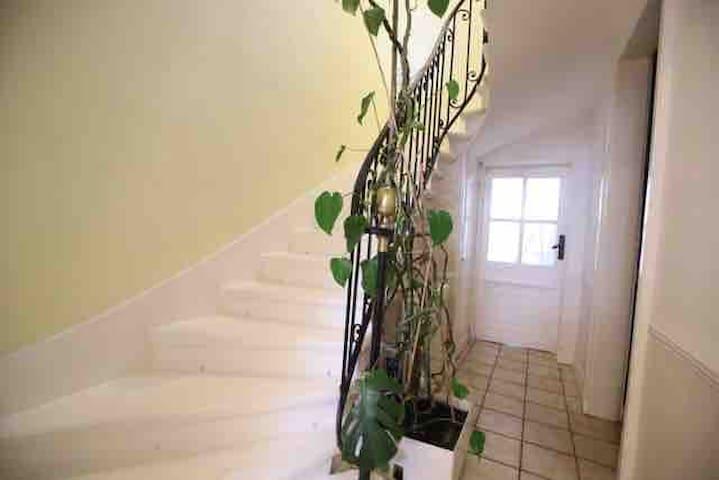 Escalier Pierre donnant accès à l'étage