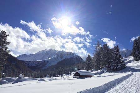 Skier's paradise Swiss Alps-Siviez,Super Nendaz - Nendaz - Pis