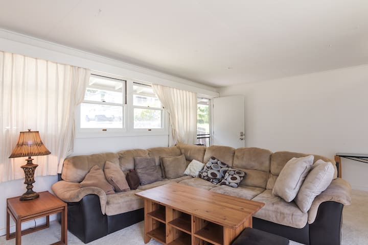 Shared living room features lots of natural light