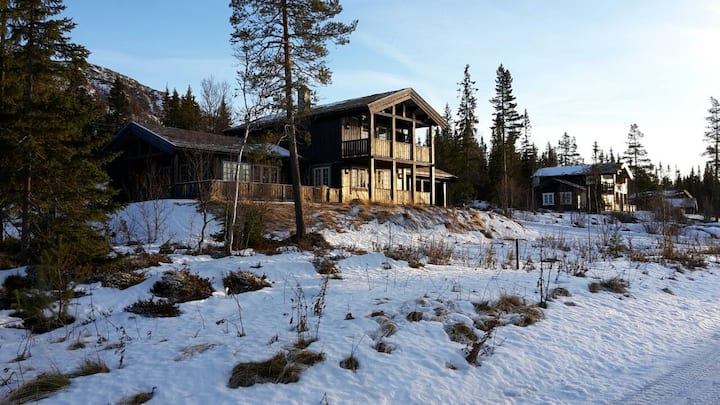 Grosse neue Hütte in Engerdal.