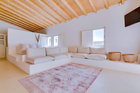 Loft with 100 m2 balcony