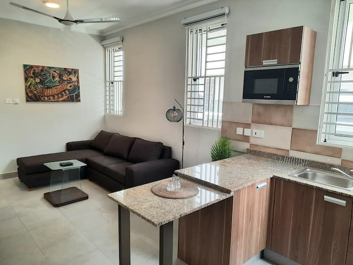 Akwaaba Apt- New, Bright 1 BR Apt in Prime Area