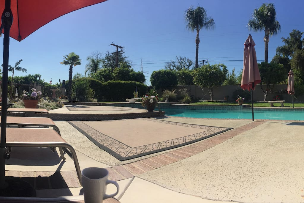 click to see panorama of part of backyard/pool area