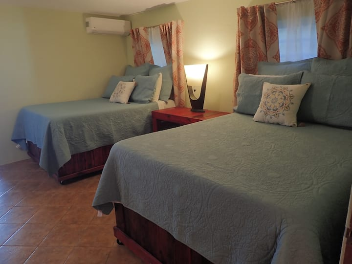 Vieques Guesthouse Room #1