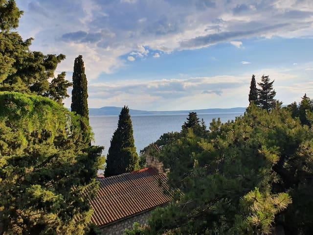 Novi Escape 1 (First row to the sea with balcony)