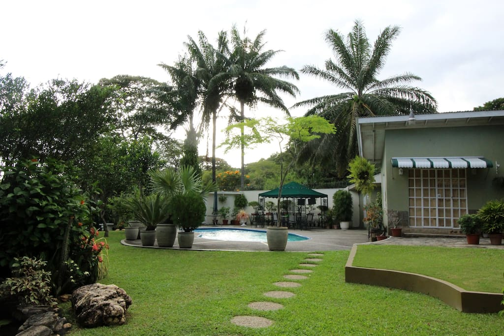 Tropical landscaped garden, fishpond and pool.