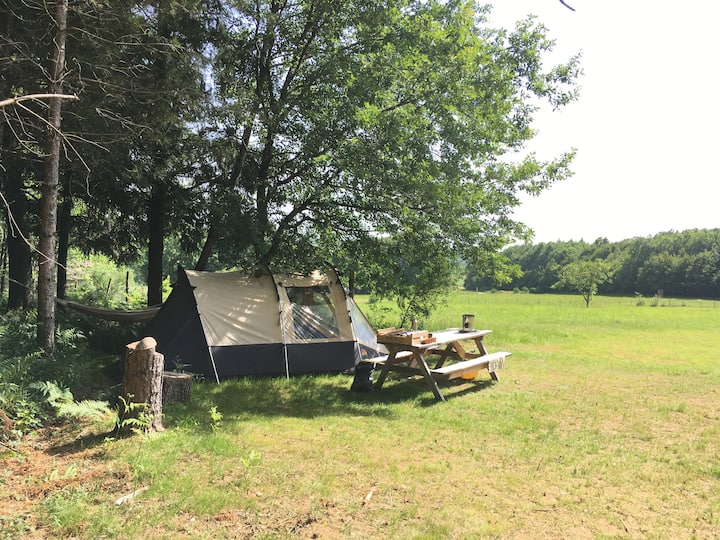 Camping EmplacementSapin - propre tente