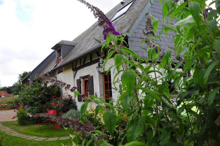 Gite du jardin des patissons - La Forêt-du-Parc - Luontohotelli