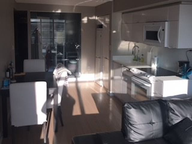 Master Bedroom with Ensuite in DT TO w/parking