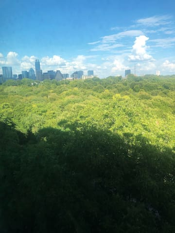 Peaceful Studio minutes away Downtown ATX!