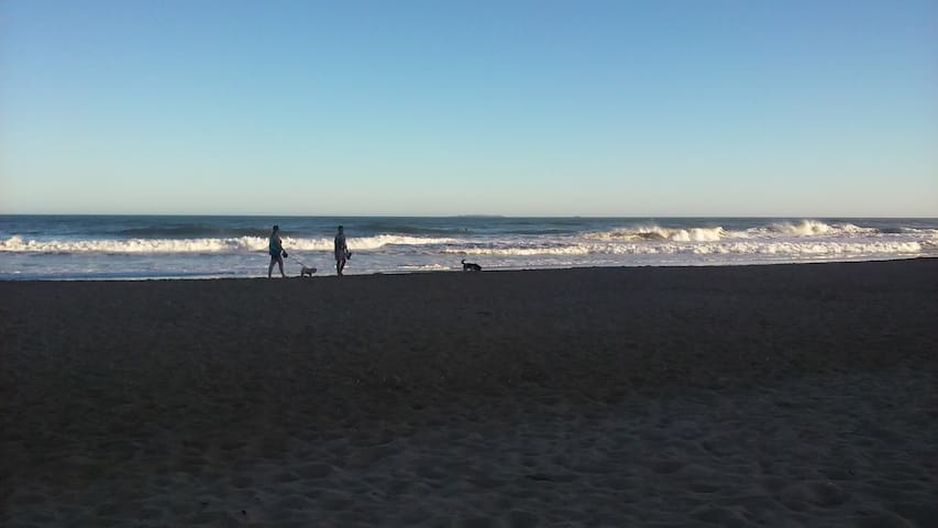 PUNTA frente a la Olla Vista al Mar