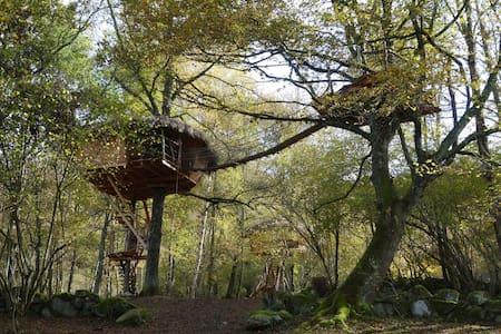 Cabane La Pitalaya, perchée à 7m, nuit romantique - Cazarilh - บ้านต้นไม้