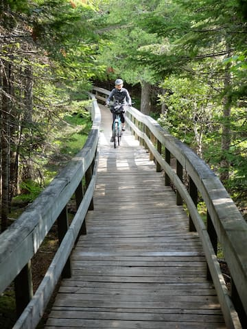 So much to explore in Canada's oceanside wilderness park: Kouchibouguac National Park