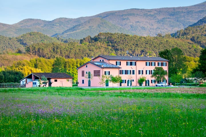 """Tenuta San Giovanni"" Arancia flat, Tuscany !"