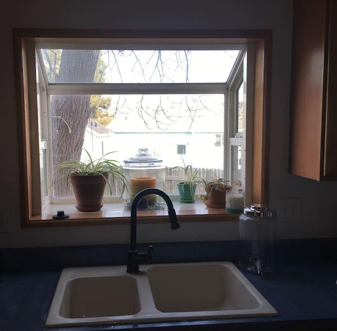 Shared space Kitchen sink
