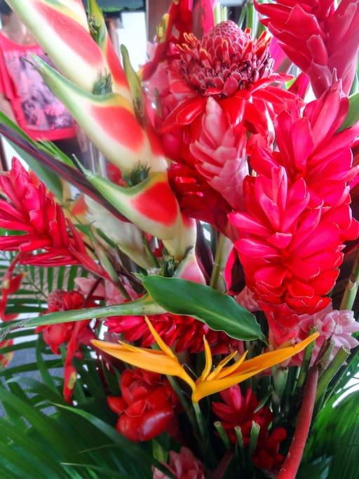 Les fleurs tropicales