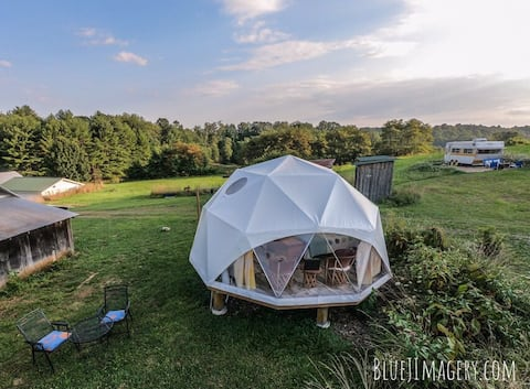 "Geodesic dome- ""Bucky"""