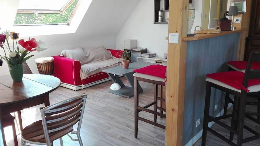 appartement spacieux et lumineux - Le Palais - Selveierleilighet