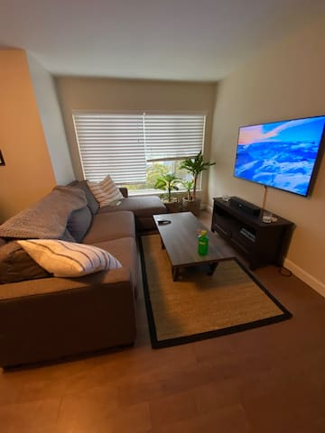 Newly remodeled 1 bedroom in the Marina