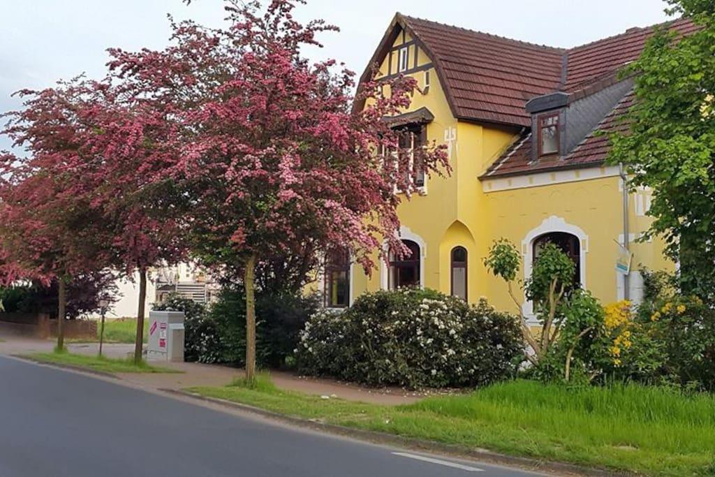 Villa Viva im Frühling