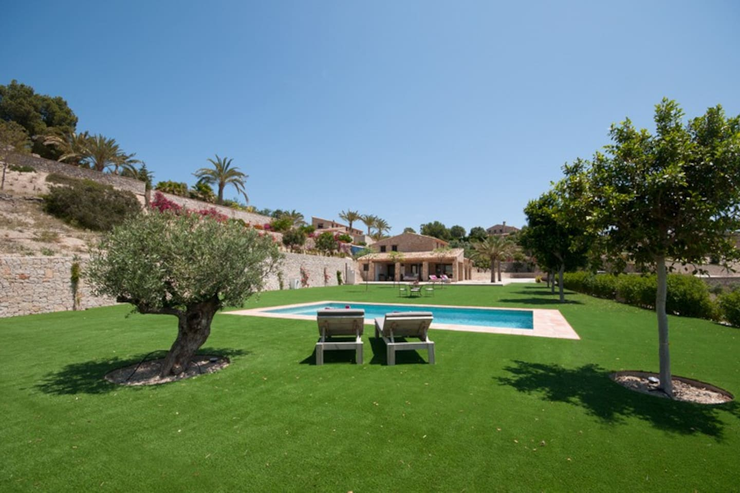 The garden with pool and sun loungers