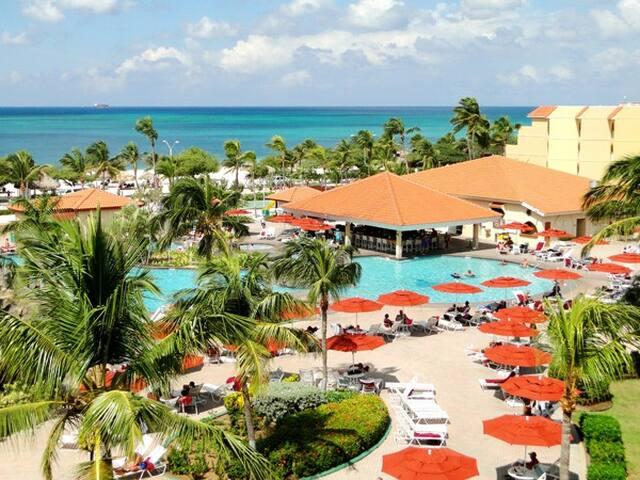 Week of New Years in Aruba! - Oranjestad-West - Lainnya