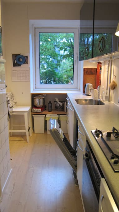 The kitchen with a washing machine - what not to like