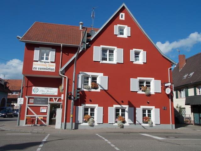 2 Zimmer Ferienwohnung, nähe Europapark, Freiburg - Teningen - Apartment