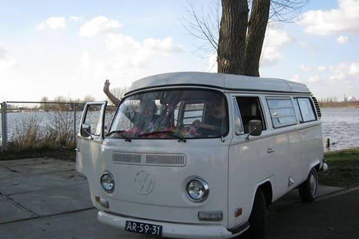 vintage VW hippiebus near amsterdam - Abcoude