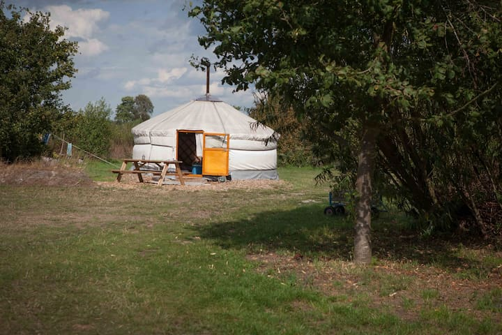 Groepsaccomodatie , yurts ,tipi, podiumtent