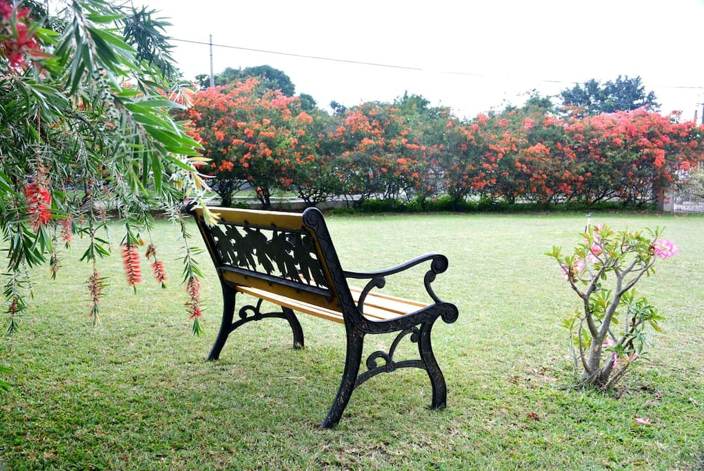 Relax on this bench on the front lawn