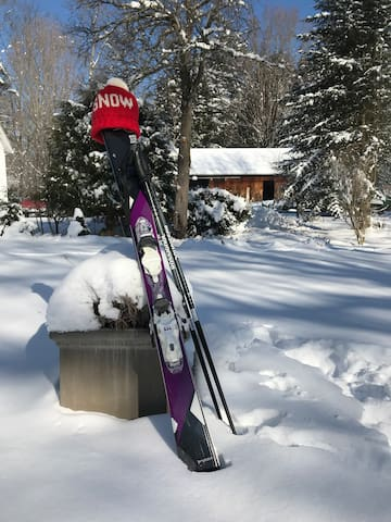 We are 20 minutes away by car from 3 ski stations. BUTTERNUT in MA, CATAMOUNT in NY and MOHAWKN VALLEY in CT. There is Cross Country skiing too!!