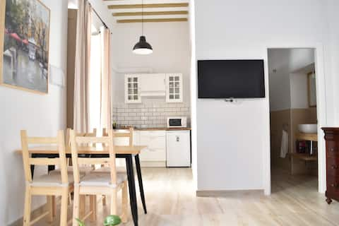 Sunny apartment with terrace in a XIX c. building