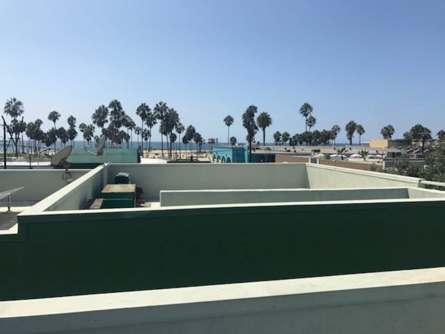 View from shared rooftop.