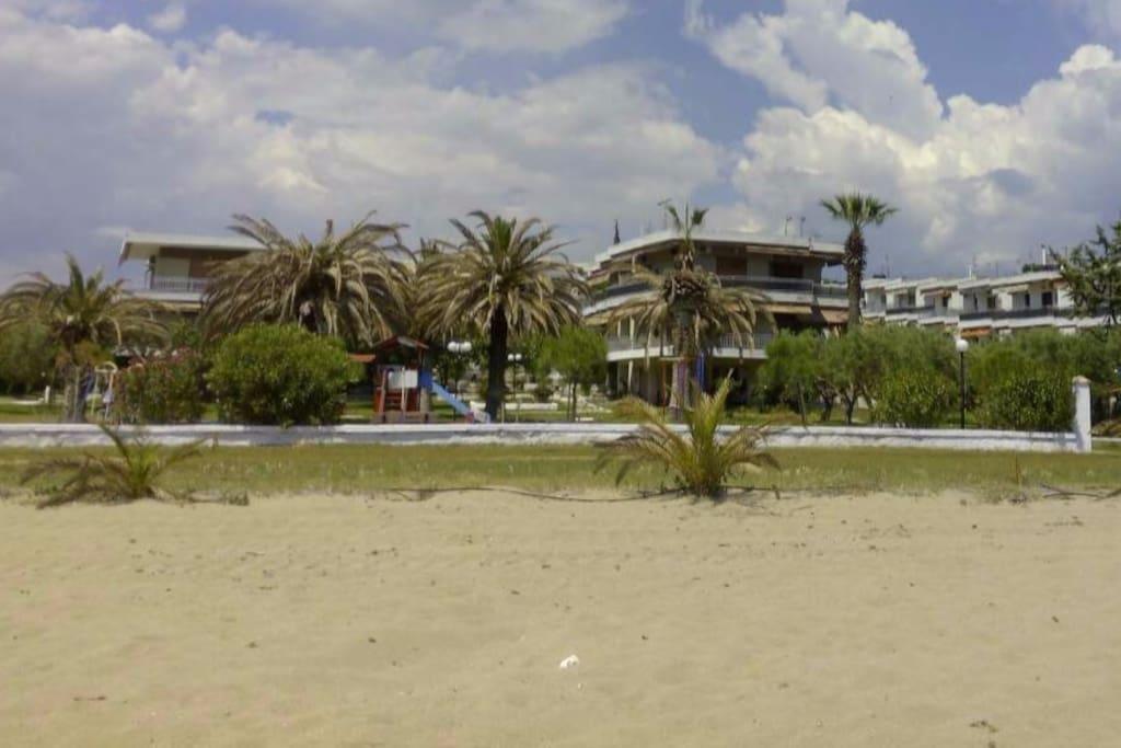 1st line palm beach family apt condomini in affitto a - Bagno palm beach pinarella ...
