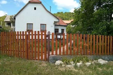 Parasztház típusú ház, kerttel. - Csákvár