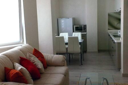 Transnistrian Luxury Apartment 5