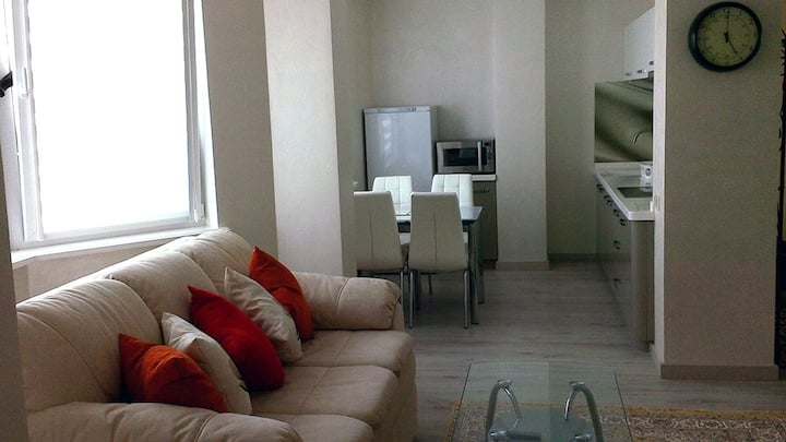 Transnistrian Luxury Apartment 5