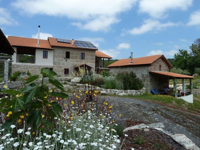 Casa da Bezerra - Lagares da Beira - Hus