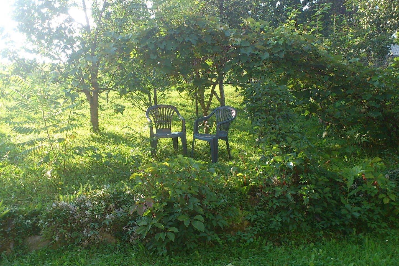 Wokół domu bardzo duży ogród i sad z jabłkami. Idealne miejsce na relaks.